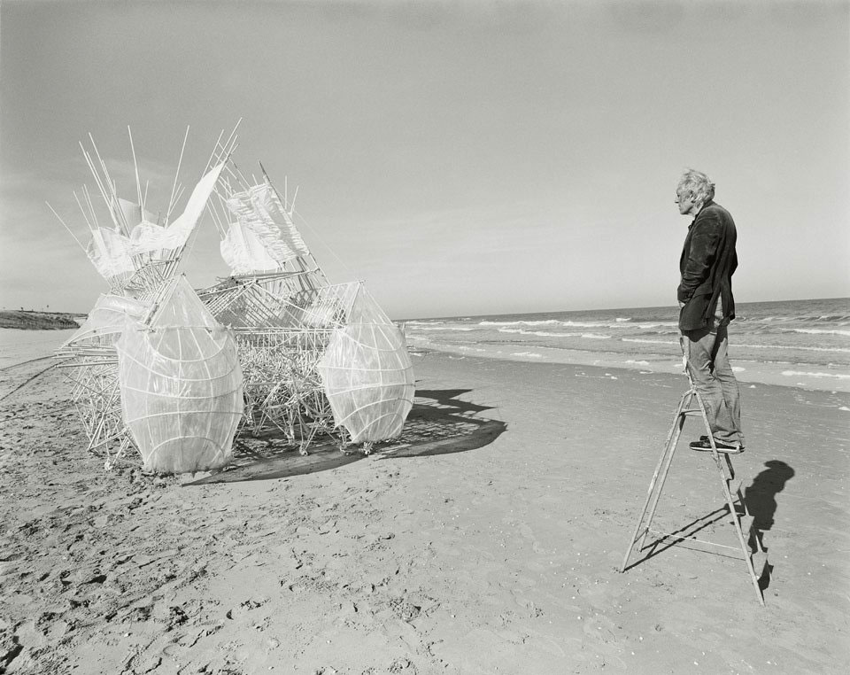STILL ALIVE