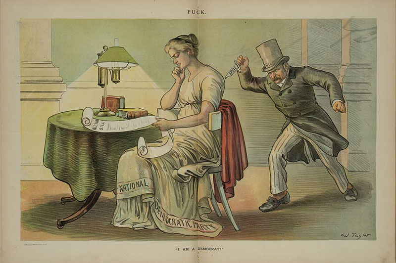 """From Puck magazine, April 25, 1894. Print shows David B. """"Hill"""" holding a knife labeled """"Spite"""" and sneaking up behind a woman labeled """"National Democratic Party"""" who is sitting at a table, reading a paper labeled """"Wilson Bill""""."""
