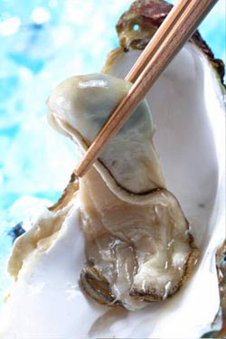 Sometimes an oyster is just an oyster.