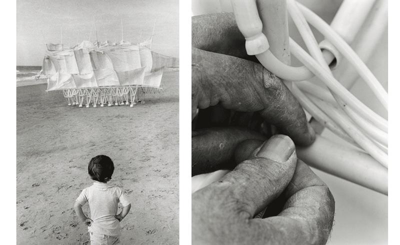 Left: Boy and Animaris Plaudens Vela (2013). Right: Hands of Theo Jansen, Delft, The Netherlands (2010). © 2014 Lena Herzog