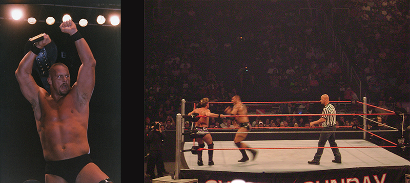 Chris Jericho Vs. Dave Batista with Stone Cold Steve Austin as special guest referee.