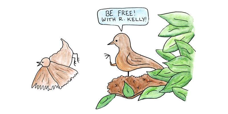 "Mama bird pushing baby bird out of nest, exclaiming, ""Be free! With R. Kelly!"""