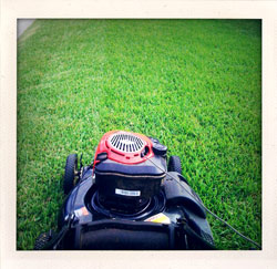 The Metaphysics of Cutting Grass